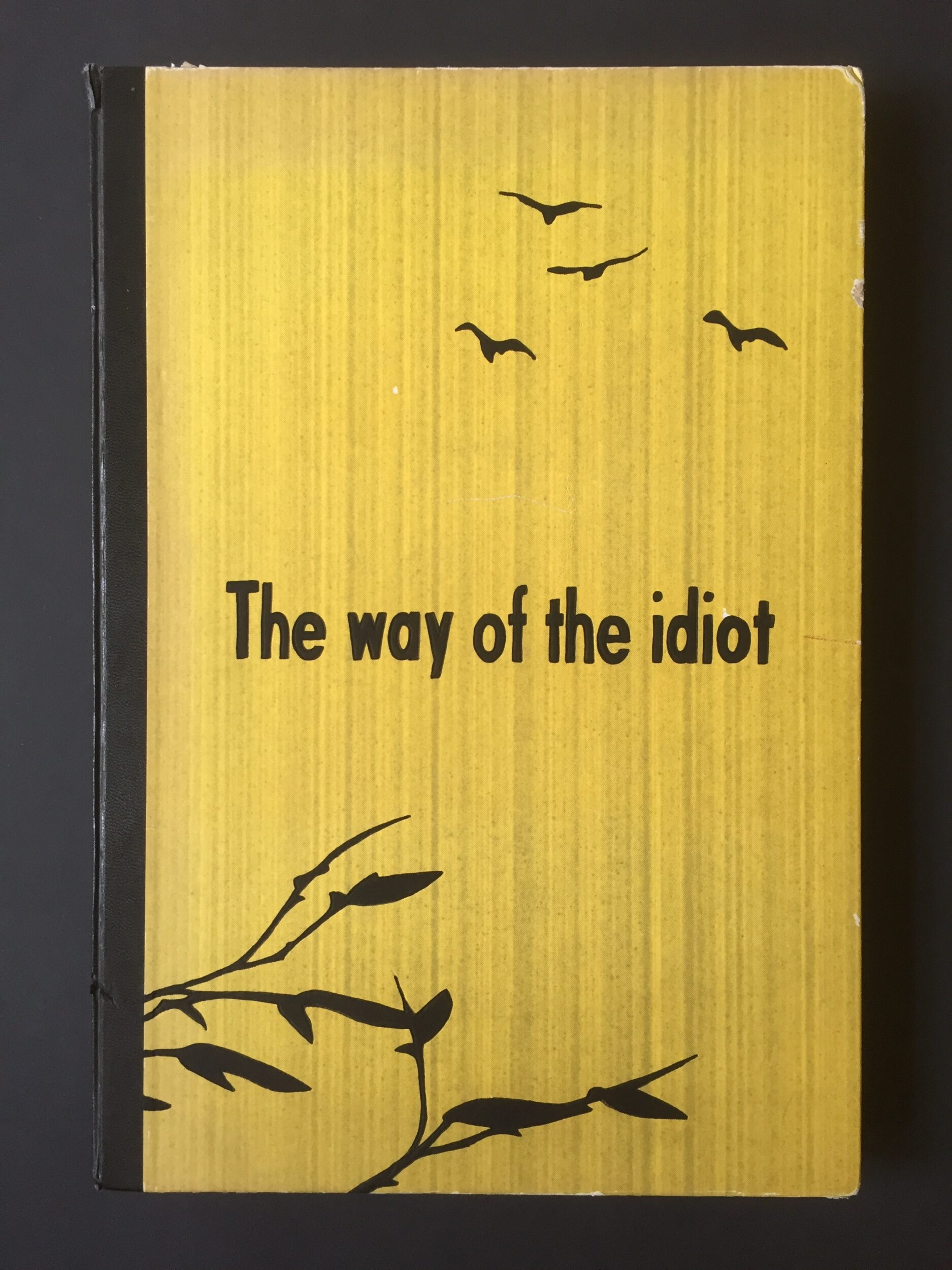 The Way Of The Idiot